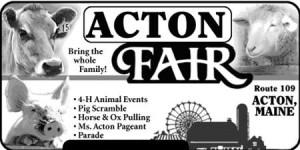 acton fair1